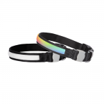DOGlite Colour Code LED Collar